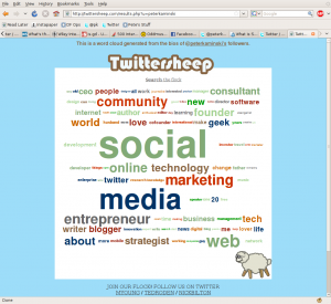 Screenshot of Twittersheep word cloud for peterkaminski